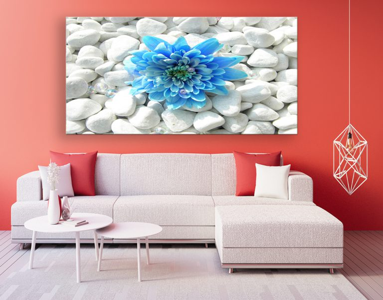 buy beautiful high quality canvas prints of blue flower on white pebbles