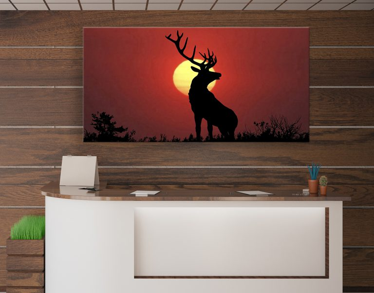 Deer in the sunset