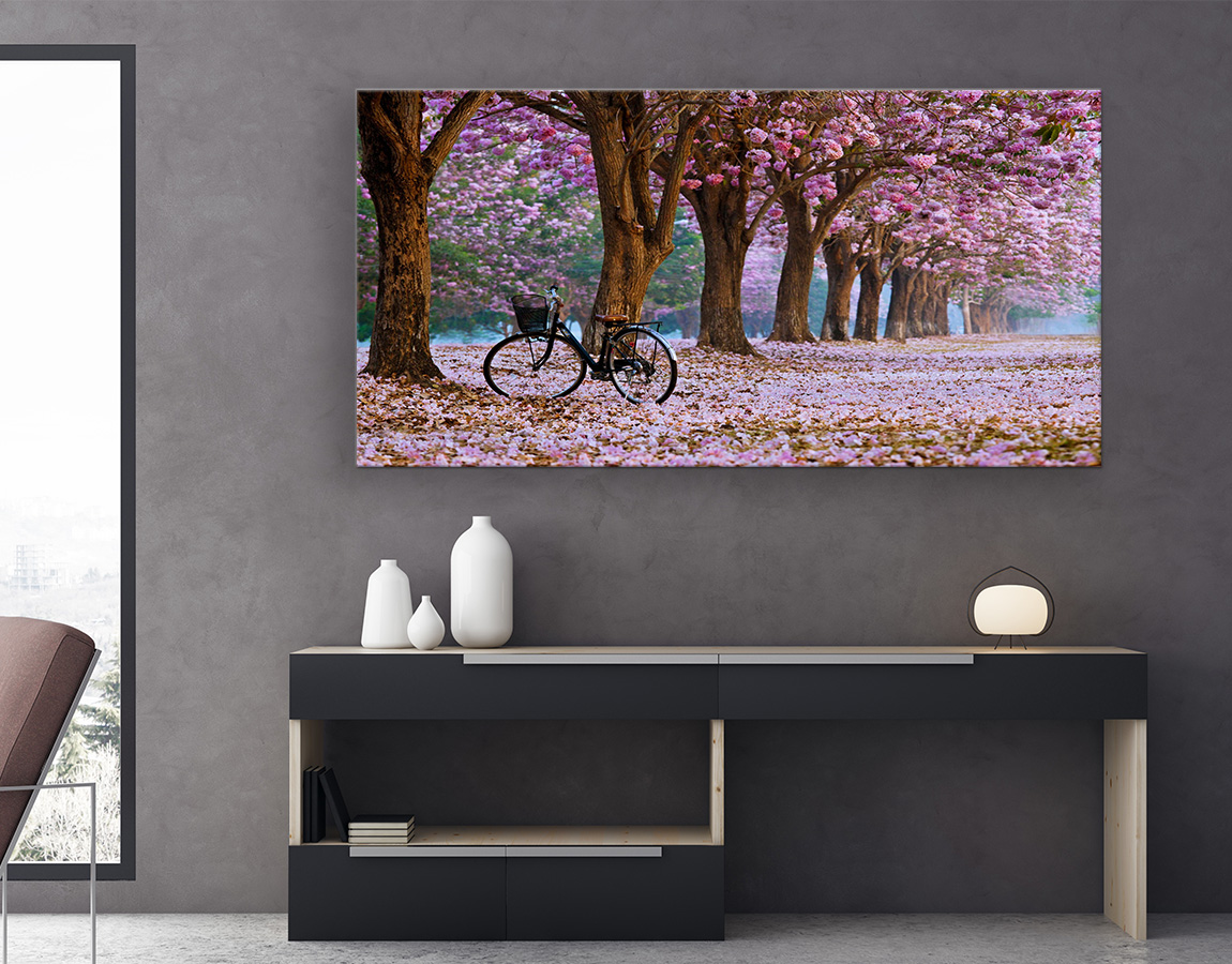 Cycling through the blossoms