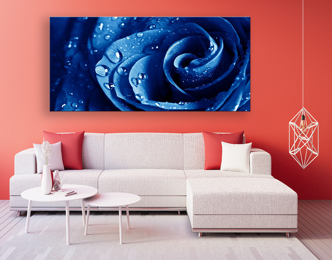 buy Stunning blue rose excellent quality canvas prints