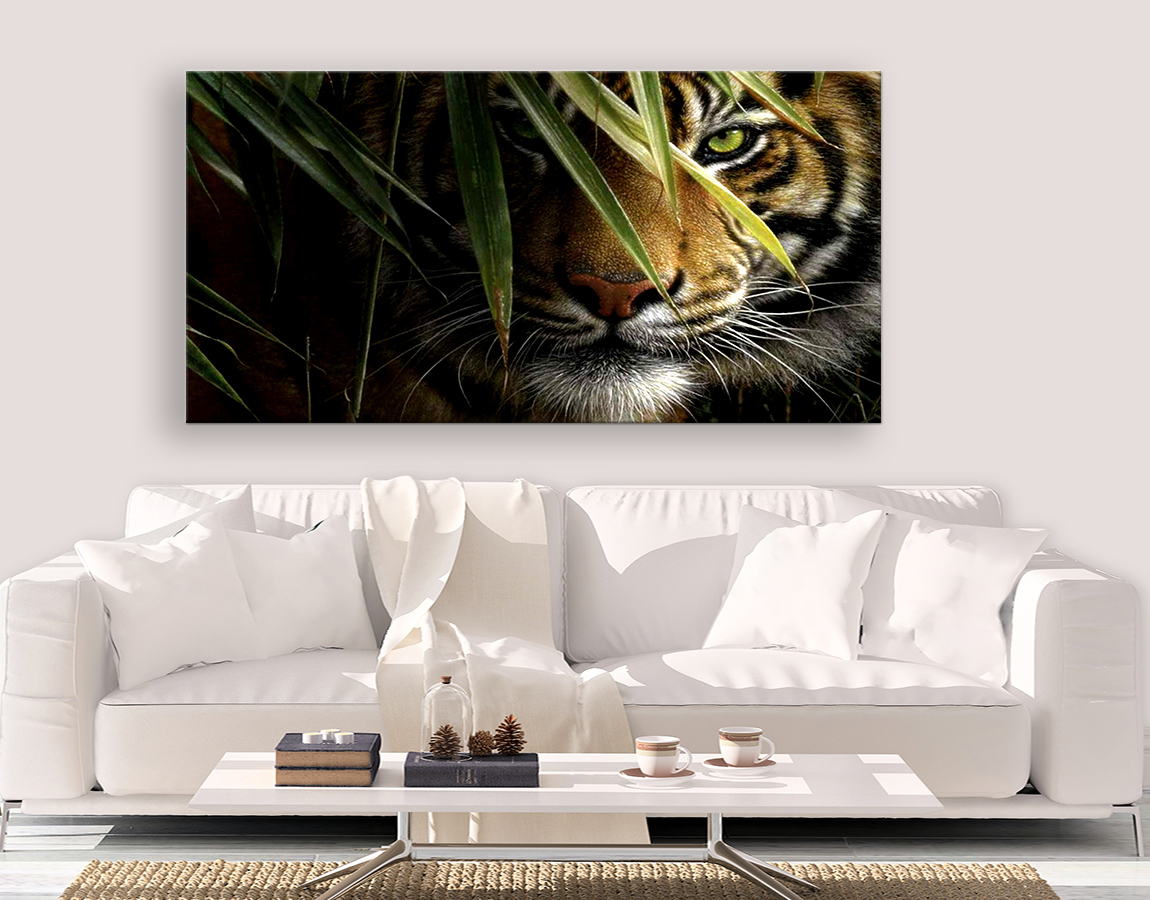 Tiger in waiting