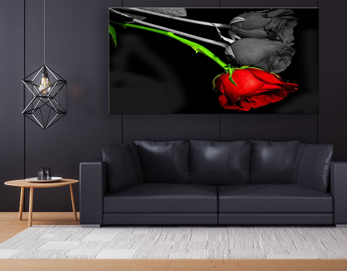 buy now Striking contrasting wall art canvas print of red rose on a black background