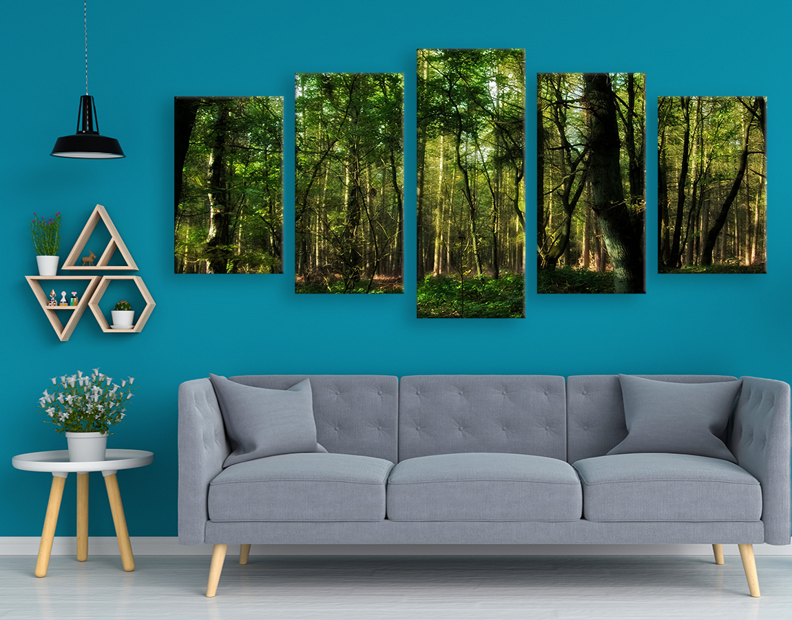 Big wall art pictures of Forest trees canvas prints