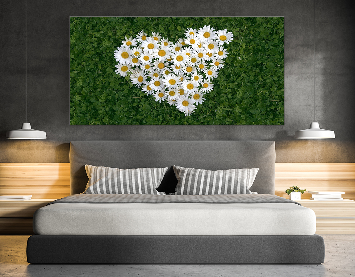 Heart of daisies